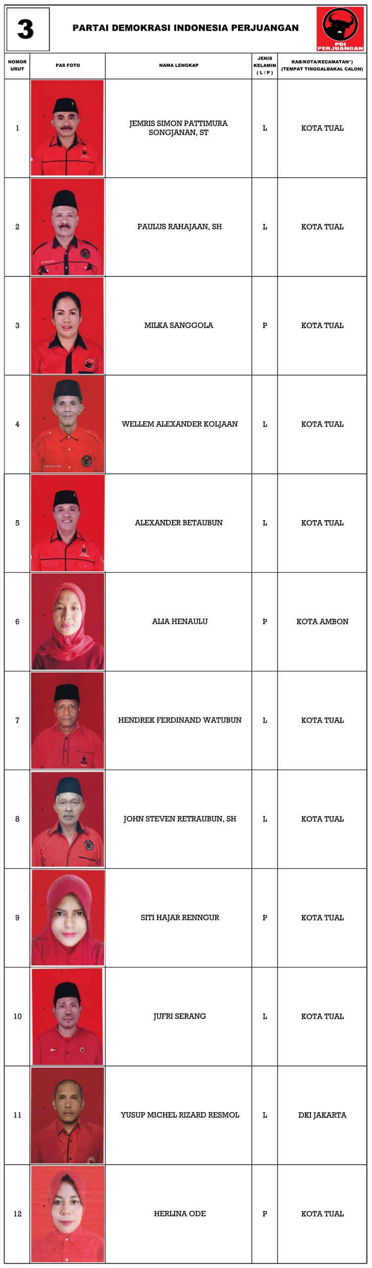 PDIP Tual Dapil 1