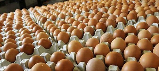 Telur ayam di Ambon