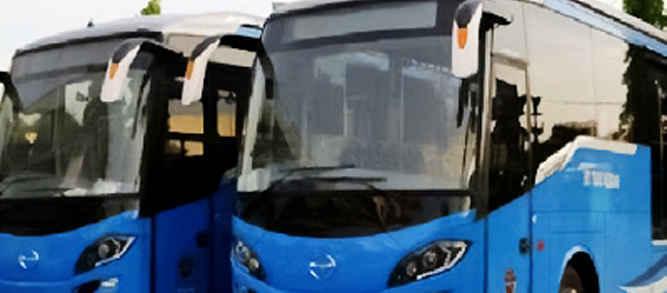 bus-trans-amboina