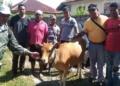 TP4D Kejati Maluku Awasi Proyek Distan Maluku TA. 2018 di Malteng.