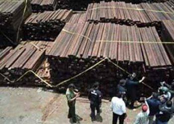 kayu-ilegal-dari-aru-di-surabaya